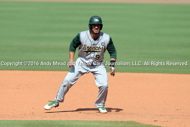 02 June 2016: Cal Poly Pomona's Jason Padlo. The Nova Southeastern University Sharks played the Cal Poly Pomona Broncos in Game 11 of the 2016 NCAA Division II College World Series  at Coleman Field at the USA Baseball National Training Complex in Cary, North Carolina. Nova Southeastern won the semifinal game 4-1 and advanced to the championship series.