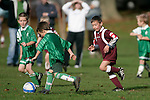 Football game between Pukekohe 7th Grade  Dolphins & Tuakau Dynamites played at Bledisloe Park on Saturday May 10th 2008.