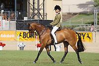 Rider 12-U14
