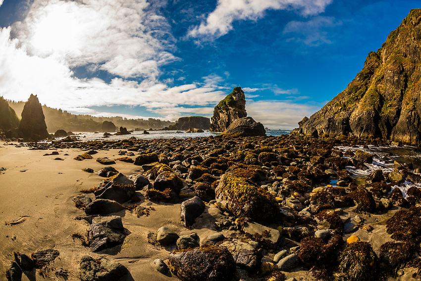 A rocky beach at Harris Beach State Park, Brookings, Oregon USA.