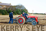 At the Ballyheigue's ploughing match at  the Rectory field, Buncurrig on Sunday