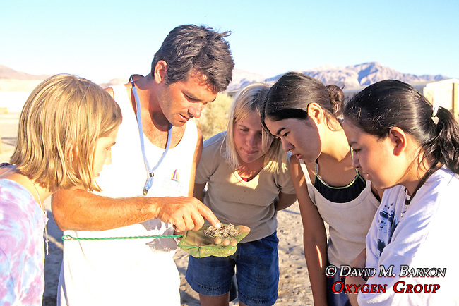 Jeff Seminoff Showing Stomach Samples to Catherine, Jamina, Marissa & Melania