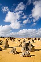 Limestone pillars jut out of the sand in the Pinnacles Desert in Nambung National Park.  Cervantes, Western Australia, AUSTRALIA.