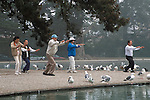 People practicing morning Tai Chi at Spreckels Lake in Golden Gate Park, San Francisco, California; NO COMMERCIAL USE
