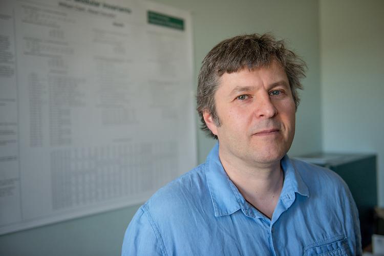Alexei Davydov, Math, Professor , Faculty, College of Arts and Sciences