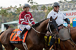 "DEL MAR, CA  AUGUST 17:  #7 Tenfold, ridden by Mike Smith, and pony rider  share a joke in the post parade before the TVG Pacific Classic (Grade 1) ""Win and You're In Breeders' Cup Classic Division"" on August 17, 2019 at Del Mar Thoroughbred Club in Del Mar, CA. (Photo by Casey Phillips/Eclipse Sportswire/CSM)"