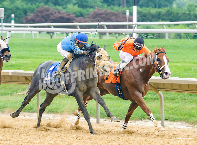 Wendy Wend winning at Delaware Park on 7/13/16