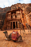Camels, with the Treasury monument behind, Petra archaeological site (a UNESCO World Heritage site), Jordan.