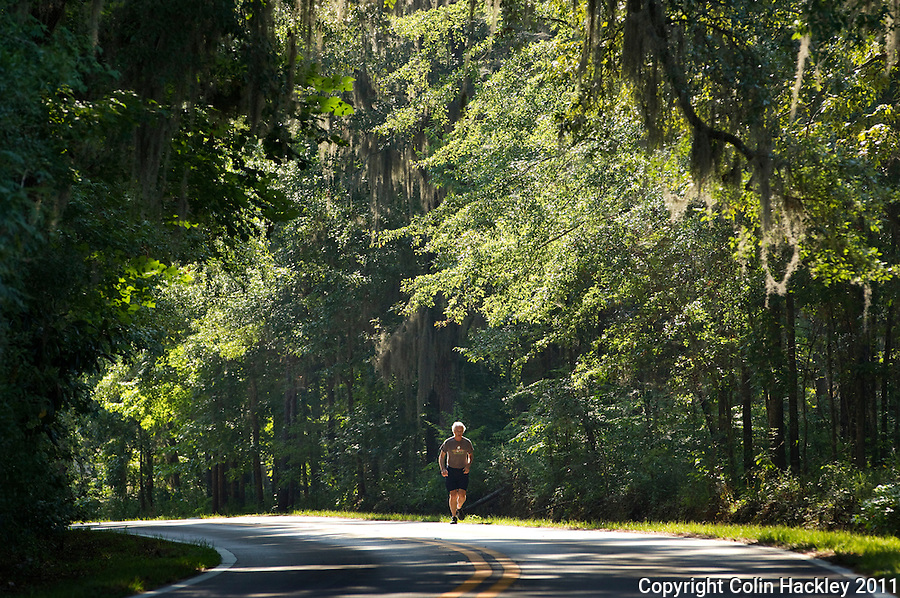 MILLER LANDING ROAD: A runner strides through the cool shade of Miller Landing Road..COLIN HACKLEY PHOTO