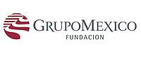 FUNDACION GRUPO MEXICO -DIA DEL VOLUNTARIADO