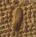 Boot Print in Dirt