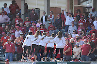 NWA Democrat-Gazette/ANDY SHUPE<br /> Arkansas Miami (Ohio) Saturday, Feb. 18, 2017, during the inning at Baum Stadium in Fayetteville. Visit nwadg.com/photos to see more photographs from the game.