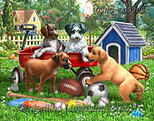 Liz,REALISTIC ANIMALS, REALISTISCHE TIERE, ANIMALES REALISTICOS, paintings+++++,USHCLD0305,#A#, EVERYDAY,dogs,garden,farm,playing ,puzzle,puzzles