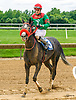 Champagne Time winning at Delaware Park on 6/8/17