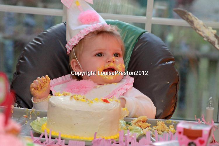Eliza's 1st birthday party