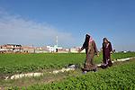 Women walk across a field in the Egyptian village of Sakra.