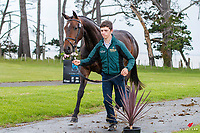 IRL-Cathal Daniels presents Henton Cartier during the FMG CCN95 First Horse Inspection. 2018 NZL-Puhinui International Horse Trials. Auckland. Thursday 6 December. Copyright Photo: Libby Law Photography