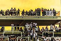 SÃO PAULO, SP, 17.02.2019 - CORINTHIANS-SÃO PAULO - Torcida do Corinthians durante partida contra o São Paulo em jogo válido pela 7ª rodada do Campeonato Paulista 2019 na Arena Corinthians em São Paulo, neste domingo, 17.   (Foto: Anderson Lira/Brazil Photo Press)