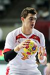 Rasmus Lauge. DENMARK vs HUNGARY: 28-26 - Quarterfinal.