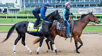 LOUISVILLE, KENTUCKY - APRIL 28: Long Range Toddy, trained by Steven Asmussen, exercises in preparation for the Kentucky Derby at Churchill Downs in Louisville, Kentucky on April 28, 2019. Scott Serio/Eclipse Sportswire/CSM
