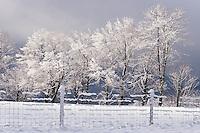 The Berkshires - Winter