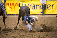 Steer wrestler Dakota Eldridge skids into the arena dirt at the College National Finals Rodeo in Casper, Wyo., Saturday, June 18, 2011. Unlike college athletes in other sports, student rodeo atheletes are allowed to compete for money and sign with sponsors. (Kevin Moloney for the New York Times)