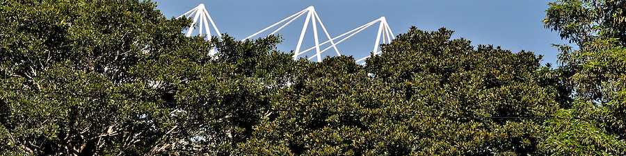 Part of the Sydney Football Stadium rises above trees in the suburb of Paddington.