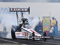 Jun 5, 2015; Englishtown, NJ, USA; NHRA top fuel driver Richie Crampton during qualifying for the Summernationals at Old Bridge Township Raceway Park. Mandatory Credit: Mark J. Rebilas-