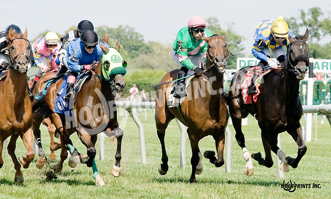 Marriage Fever winning at Delaware Park on 8/16/14