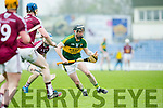 In Action Kerry's John Egan in the  Leinster Senior Hurling Championship Round Robin Group, Round 2,  Kerry V Westmeath    on Saturday at Tralee's Austin Stack Park on Saturday
