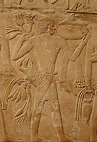 Afrique/Egypte/Saqqara: La tombe de Mérérouka