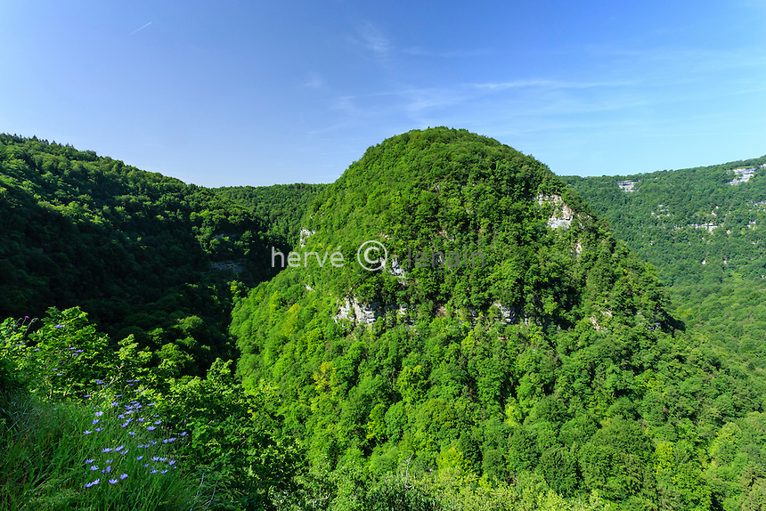 France, Doubs (25), Mouthier-Haute-Pierre, les gorges de Nouailles et la Loue // France, Doubs, Mouthier Haute Pierre, the Loue valley at the Nouailles canyon