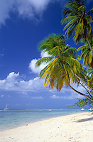 Trinidad & Tobago, Commonwealth, Tobago, Pigeon Point: Tobago's famous beach