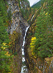 Ross Lake National Recreation Area, Washington: Gorge Creek Falls flowing out of the North Cascades mountains in to the Skagit river with autumn colored forest