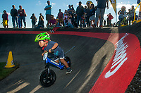 NWA Democrat-Gazette/BEN GOFF @NWABENGOFF<br /> Jesse McCourt, 3, of Springdale races Wednesday, Oct. 10, 2018, during the Strider Bikes pump track races at The Jones Center's Runway Bike Park in Springdale. McCourt was the overall winner for the age 3-4 group. Children ages 3-6, divided into two age groups, raced head-to-head to see who was the fastest on the balance bikes designed to help young children learn how to ride. It was the first competetive event to use the new pump track that was built to host the Red Bull Pump Track World Championship Final coming up Saturday.