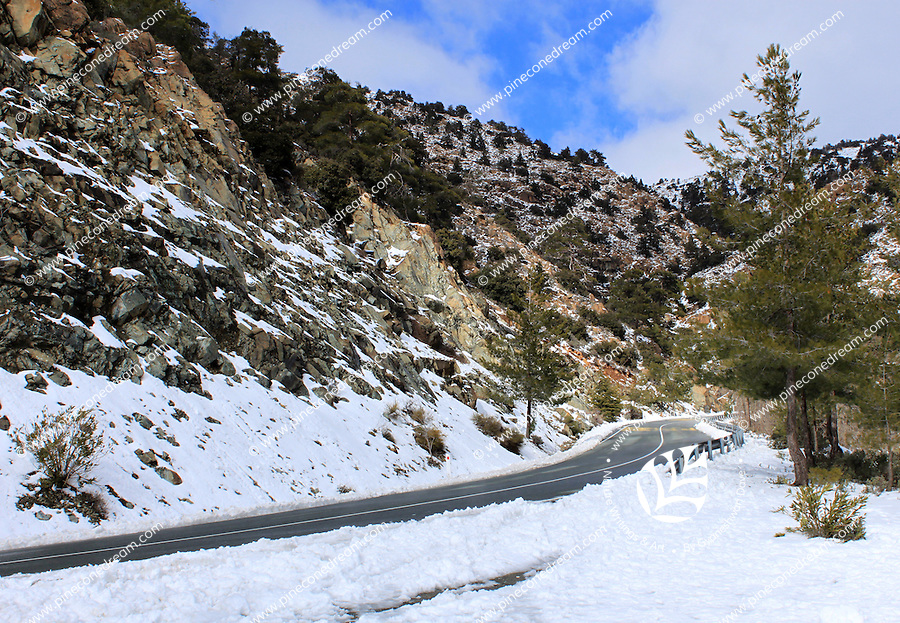 The snowy road leading to Troodos mountain.