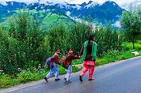 Leh-Manali Highway, Himachal Pradesh, India.