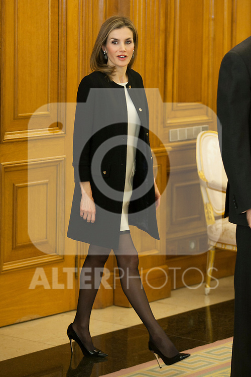 Queen Letizia of Spain receives Cinema Academy President Enrique Gonzalez Macho and Cinema Arts and Sciences Board of Directors during a Royal Audience at Zarzuela Palace in Madrid, Spain. December 15, 2014. (ALTERPHOTOS/Victor Blanco)
