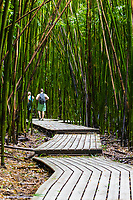 A couple walk through a bamboo forest in the Kipahulu district of Haleakala National Park, Maui.