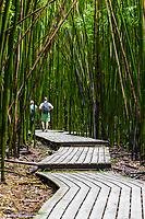 A couple walk through a bamboo forest in the Kipahulu district of Haleakala National Park, Maui.