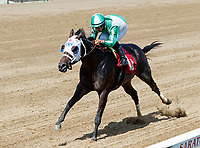 The Caretaker (no. 1A) wns Race 4, Aug. 4, 2018 at the Saratoga Race Course, Saratoga Springs, NY.  Ridden by Luis Saez and trained by Kiaran McLaughlin, The Caretaker finished 1 1/2 lengths in front of Vitsal (no. 2).  (Photo credit: Bruce Dudek/Eclipse Sportswire)