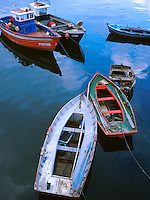 Spain, Galicia, La Coruna. Boats in harbor. These boats are used to get to larger vessels anchored away from docks. La Coru a Galicia Spain.