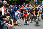 The peleton in action during Stage 17 of the 2018 Giro d'Italia, The Franciacorta Stage running 155km from Riva del Garda to Iseo, Italy. 23rd May 2018.<br /> Picture: LaPresse/Fabio Ferrari | Cyclefile<br /> <br /> <br /> All photos usage must carry mandatory copyright credit (&copy; Cyclefile | LaPresse/Fabio Ferrari)