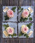 Interlitho, FLOWERS, BLUMEN, FLORES, photos+++++,KL16443,#f#