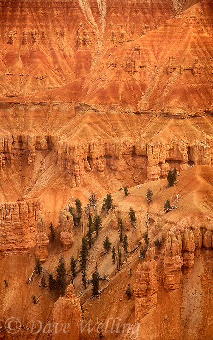 732700024 cliff formations from point supreme overlook in cedar breaks national monument utah