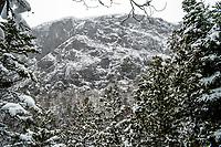 Wallface Mt, High Peaks Wilderness Area, Adirondack Forest Preserve, New York
