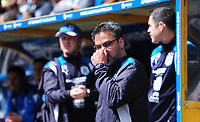 Huddersfield Town manager David Wagner <br /> <br /> Photographer Chris Vaughan/CameraSport<br /> <br /> The EFL Sky Bet Championship Play-Off Semi Final First Leg - Huddersfield Town v Sheffield Wednesday - Saturday 13th May 2017 - The John Smith's Stadium - Huddersfield<br /> <br /> World Copyright &copy; 2017 CameraSport. All rights reserved. 43 Linden Ave. Countesthorpe. Leicester. England. LE8 5PG - Tel: +44 (0) 116 277 4147 - admin@camerasport.com - www.camerasport.com