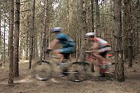 07 APR 2007 - THETFORD, UK - Competitors speed along a singletrack section during round 1 of the British Mountain Bike X Country series. (PHOTO (C) NIGEL FARROW)