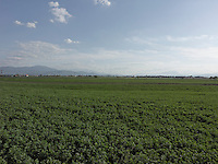 AG_LOCATION_65047