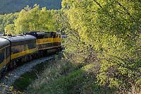 The Alaska Railroad's Coastal Classic train runs along Turnagain Arm into the evening sun.
